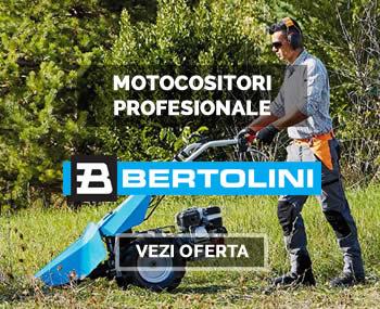 Motocositori bertolini si Grillo 2019 jpg